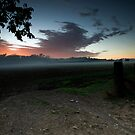 Enter the Sunrise Field - Theresa Park, NSW by Malcolm Katon