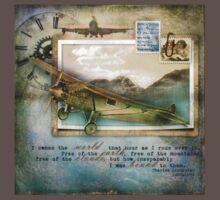 Spirit of Flight by Karen Scrimes