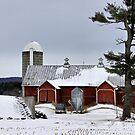 Sheldon Barn by Deborah  Benoit