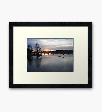 Bear Creek, Bayou George, Fl, December 26, 2009 Framed Print