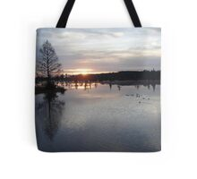 Bear Creek, Bayou George, Fl, December 26, 2009 Tote Bag