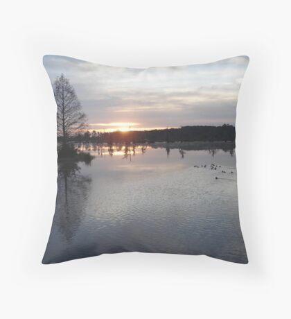 Bear Creek, Bayou George, Fl, December 26, 2009 Throw Pillow