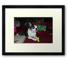 Just What I Wanted Framed Print