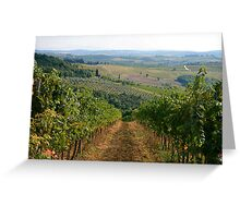The Vineyards of Tuscany Greeting Card