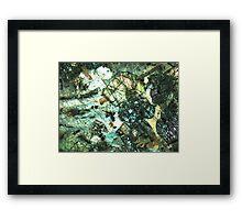 496 Framed Print