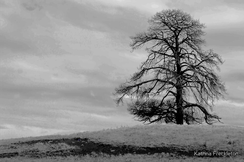 Lone Tree by Katrina Freckleton