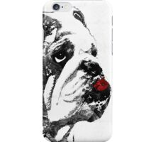 Bulldog Pop Art - How Bout A Kiss 2 - By Sharon Cummings iPhone Case/Skin