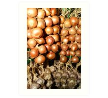 Know Your Onions Art Print