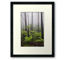 Primal mist. Framed Print