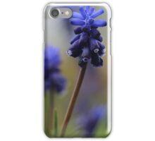flowers at Kew Garders iPhone Case/Skin