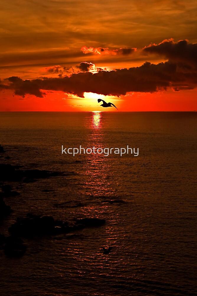 Lizard Point Sunrise  by Richard Hamilton-Veal