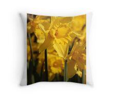 Daffodills at Ham House Throw Pillow