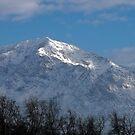 A Winter's Morning ~ Ben Lomond Peak, Utah by Jan  Tribe
