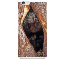 Porcupine home iPhone Case/Skin
