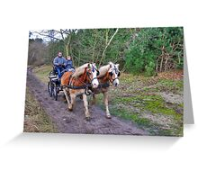 A forest ride Greeting Card