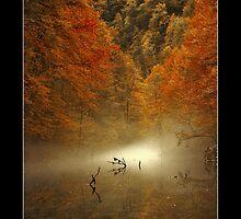 mist by Stankina