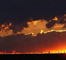 Fence Posts by Jim Cumming
