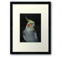 Cheeky Charlie Framed Print