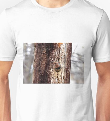Northern Flicker T-Shirt