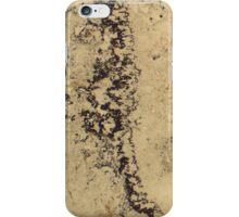 507 iPhone Case/Skin