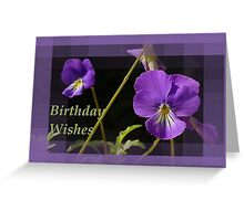 Birthday Wishes Greeeting With Viola Pansies Greeting Card