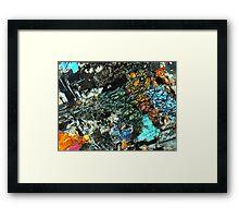 509 Framed Print