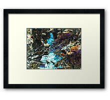 510 Framed Print