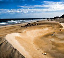 Dune Shades... by Warren. A. Williams