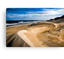 Dune Shades... Canvas Print