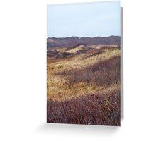 Autumn Dunes Greeting Card