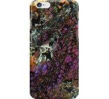 511 iPhone Case/Skin