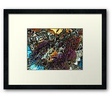 511 Framed Print