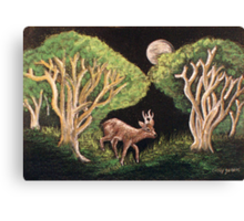 Fairy of the Forest Canvas Print