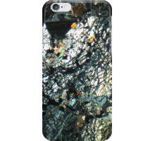 513 iPhone Case/Skin