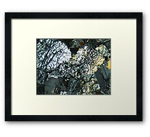 513 Framed Print