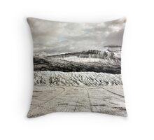 Glacier View Throw Pillow