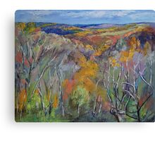Appalachian Trail Canvas Print