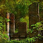 Among the ruins of the south by Scott Mitchell