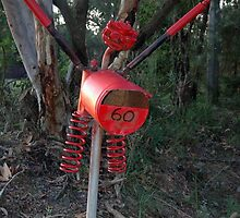 Boo Mail - NSW by CasPhotography
