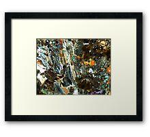 515 Framed Print