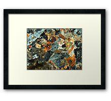 516 Framed Print