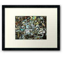 517 Framed Print