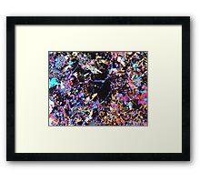 520 Framed Print