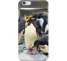 Do as your father tells you iPhone Case/Skin
