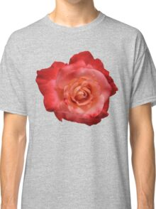Ombré Red Garden Rose I - Hipster/Pretty/Trendy Flowers Classic T-Shirt