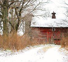 Yankee Road Barn by Judy Seltenright