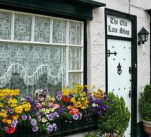 The Old Lace Shop ~ Beer, Devon by Susie Peek