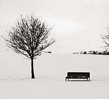 Urban Winter - Hogganfield Loch, Glasgow, Scotland, UK by simpsonvisuals