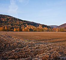 Autumn hills by Kasia Fiszer