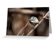 Bridled Titmouse Cropped Greeting Card